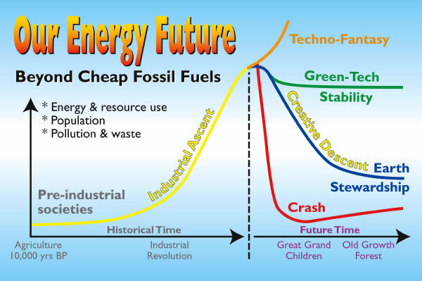 Forests & Energy